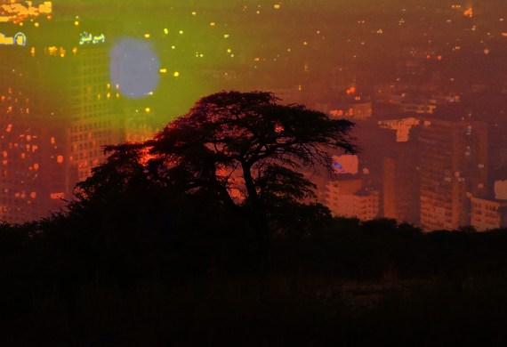 Africa startup development