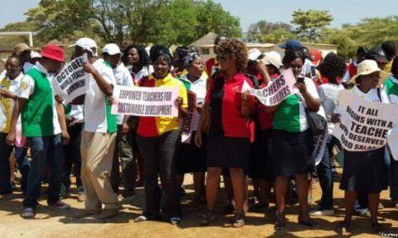 The strike is on: ZIMTA