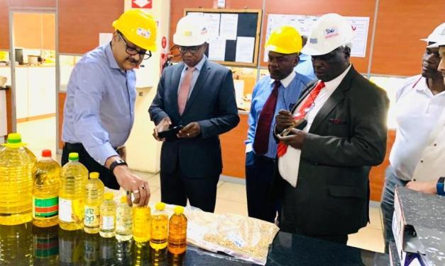 Olivine Industries, Surface Wilmar halt operations