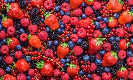 Berries exports rake in forex