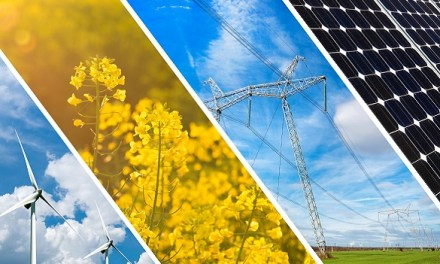 Business Ideas Aimed At Combating Energy Shortages In Zimbabwe