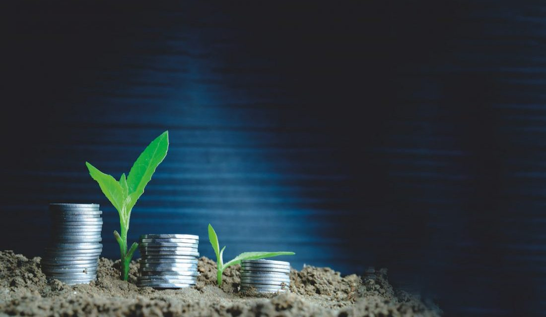 9 Viable Investment Opportunities In Zimbabwe