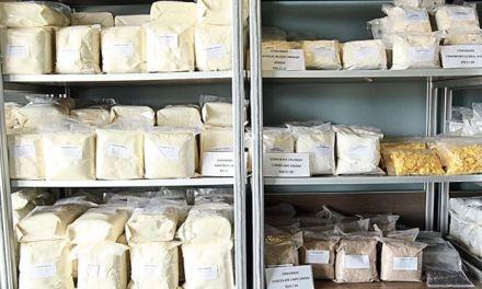 Starting a baking supplies business in Zimbabwe