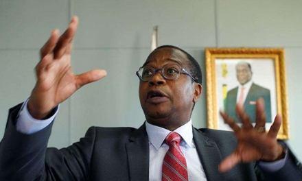 Zimbabwean dollar notes coming but not soon: Ncube