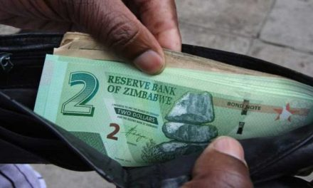 Zim Dollar notes coming: Ncube tells Bloomberg