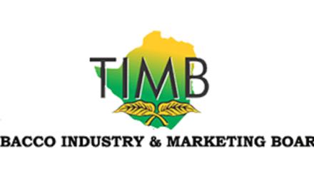 TIMB Tender – TRANSPORT LOGISTICS BROKERAGE SERVICES
