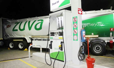 A Critical Look At The Zuva DFI Service Stations Development