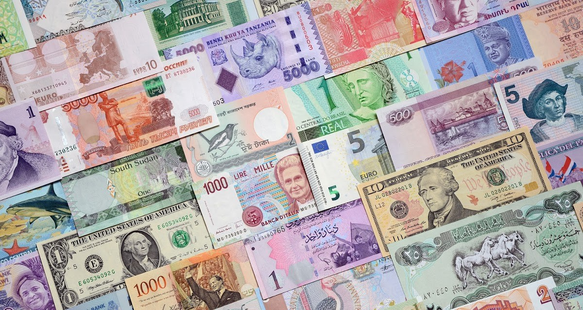 Back to basics: How virtually every business earns the country foreign currency