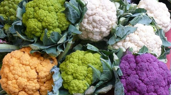 Cauliflower Farming in Zimbabwe