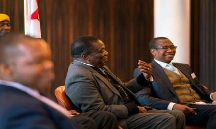 Transitional Stabilisation Programme Update Highlights