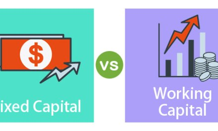 Capital vs Working Capital