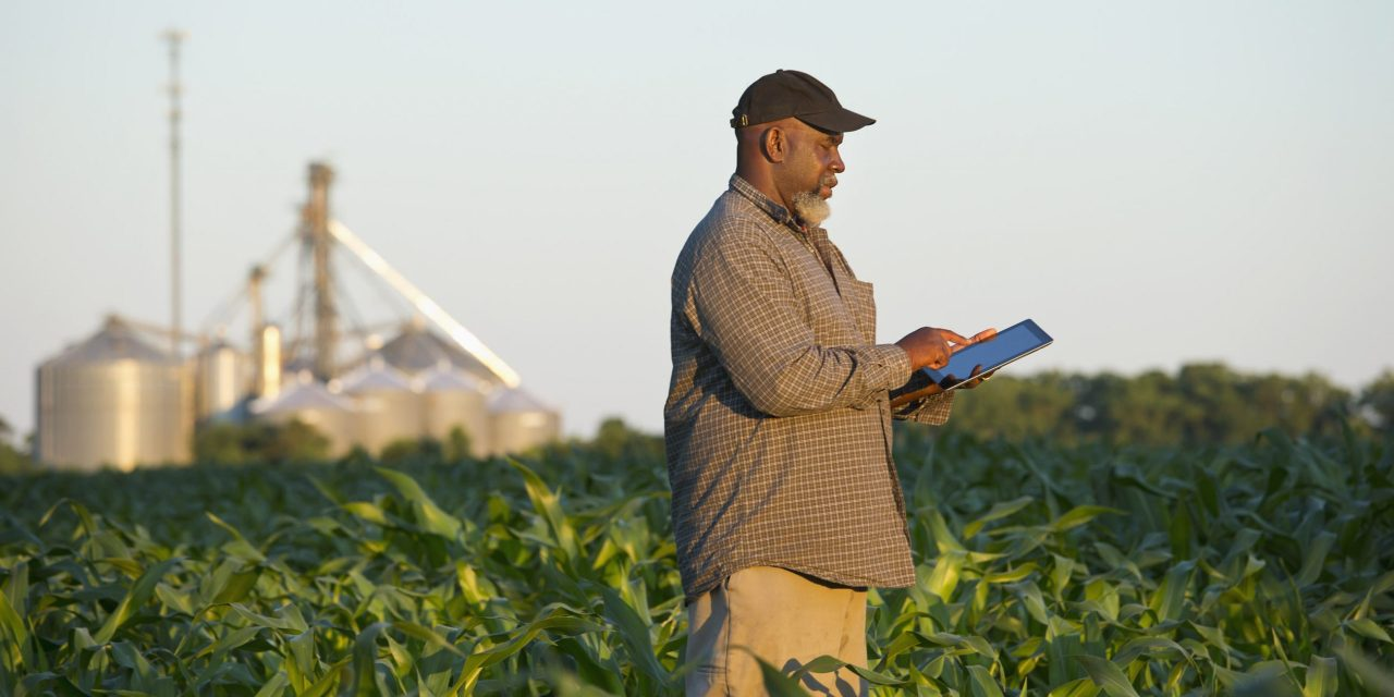 2021 Agribusiness And Food Opportunities in Zimbabwe