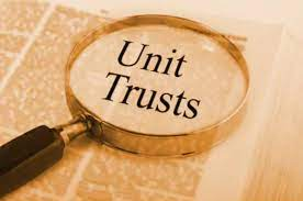 How well have Zimbabwean Unit Trust funds performed in the first half 2021?