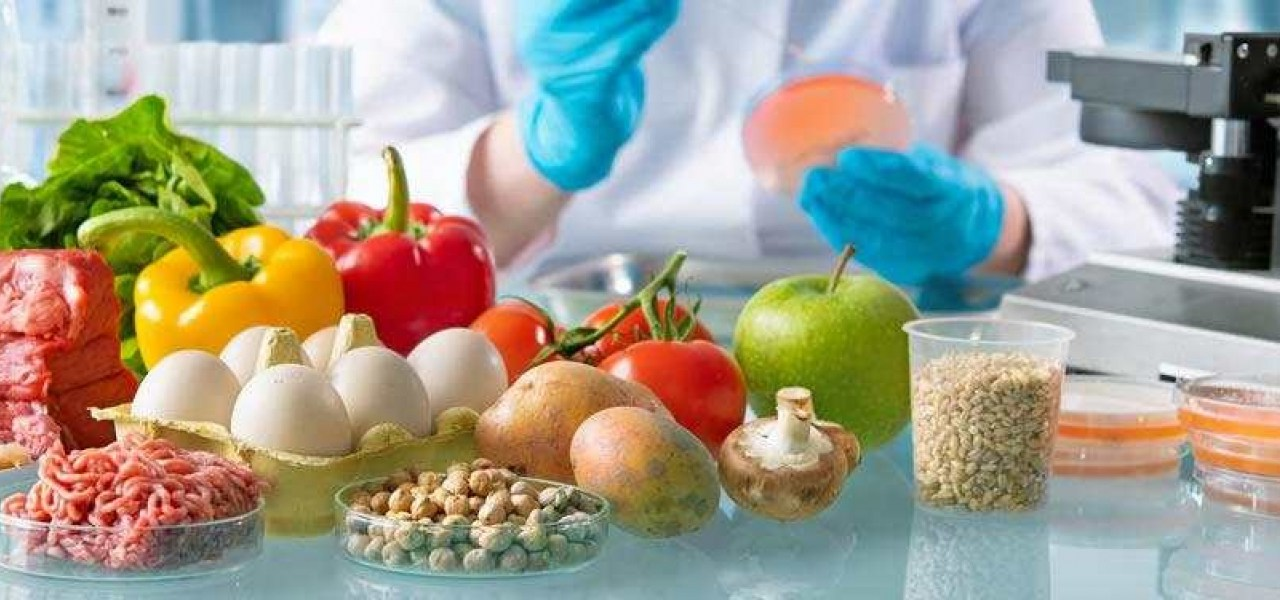 Food Industry Licensing In Zimbabwe: Food Safety, Handling, And Processing