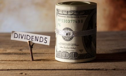 Understanding the dividend share issue