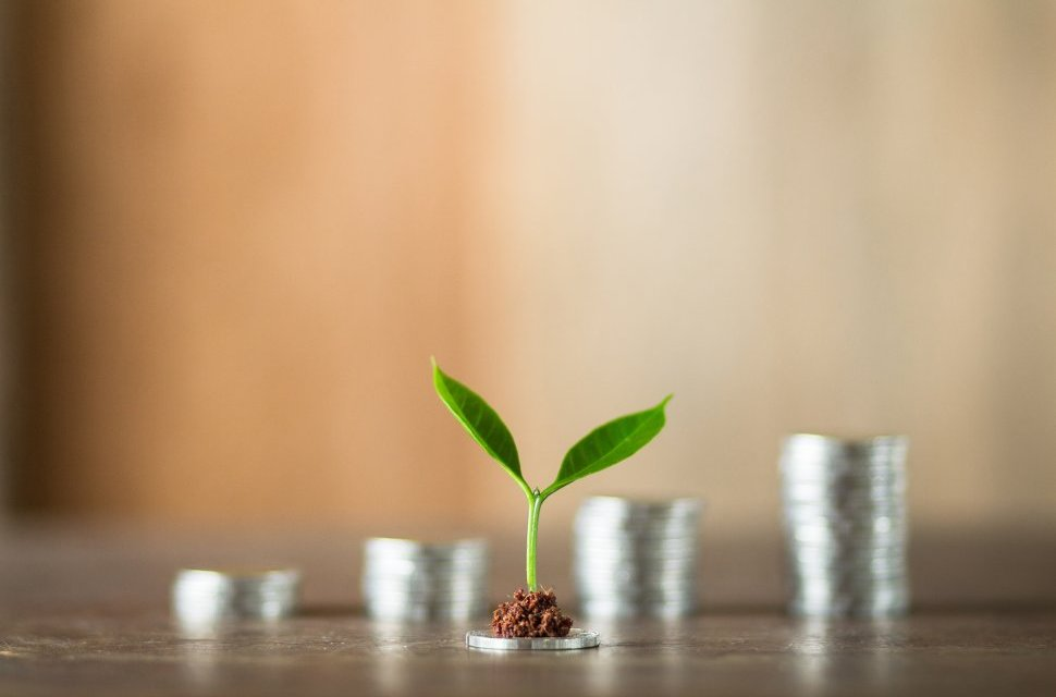 Investing with small amounts of money