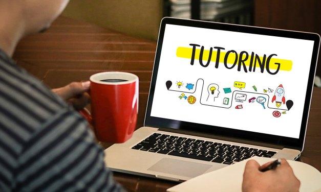 Online Tutoring Business Idea for Zimbabwe