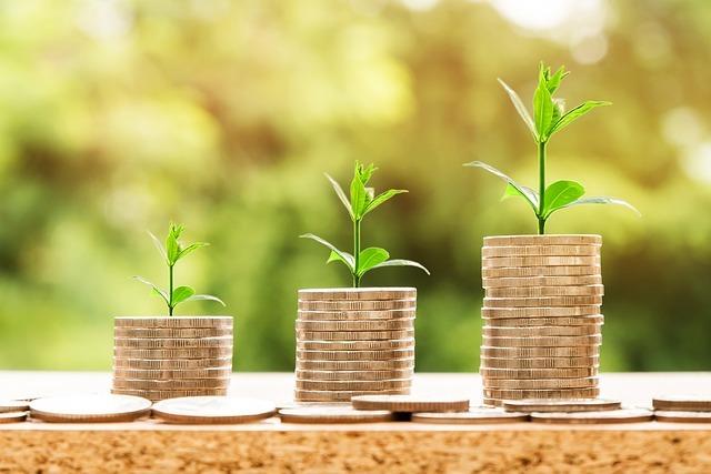 Raising venture capital investment
