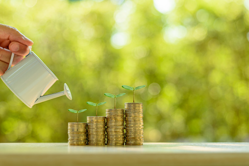 6. The Spotlight is on Sustainable Finance - The Growing Startup Industry Trends