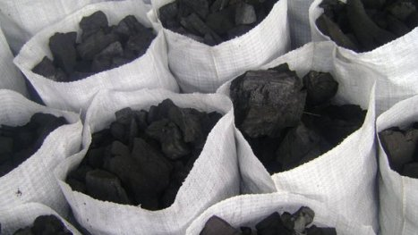 How To Start A Lucrative Charcoal Export Business In Nigeria
