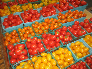How To Start A Lucrative Tomato Farming Business In Nigeria