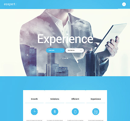 Business Consultant WordPress Theme
