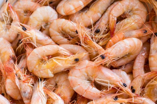 How To Start Exporting Frozen Shrimps And Prawns From Nigeria To International Buyers