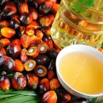 How To Start The Lucrative Export Of Palm Kernel Oil (PKO) From Nigeria To International Buyers