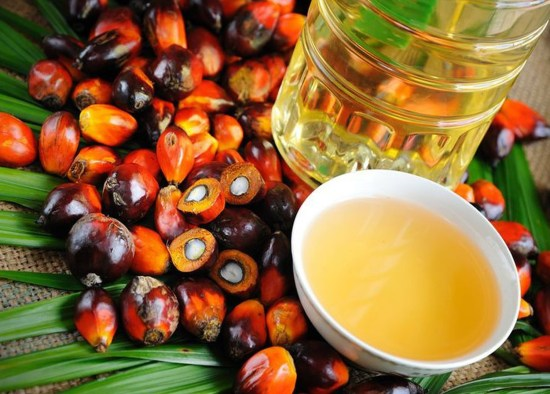 How To Start Exporting Palm Kernel Oil (PKO) From Nigeria To International Buyers