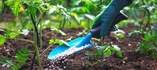 How To Start Organic Fertilizer Production In Nigeria Or Africa: Full Guide