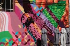 Bird Graffiti on the cafe