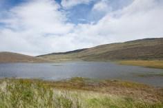 Ducks-lagoon-Patagonia-Estancia-Cristina-3718