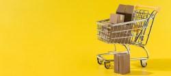 E-Commerce für Einsteiger: Was ist das beste Shopsystem für StartUps?
