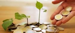Geld vermehren als Selbstständiger: Welche Möglichkeiten gibt es, deine Gewinne anzulegen?
