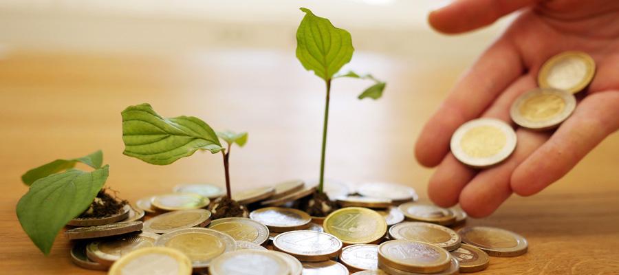 Geld vermehren (Bild: Pixabay)