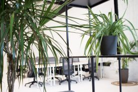 StartWell-230_Niagara_Private-Office_11-14-19-219