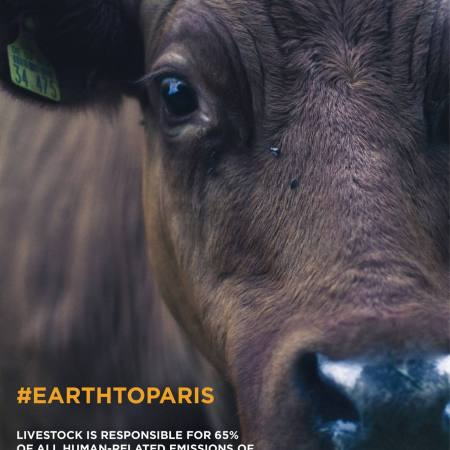 Livestock is responsible for 65% of all human-related emissions of nitrous oxide - a greenhouse gas with 296 x the global warming potential of carbon dioxide.