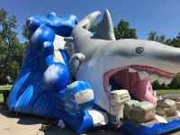 giant inflatable shark slide rental