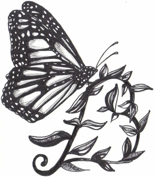 Картинки черно белые бабочка: ᐈ Черно белая бабочка фото ...