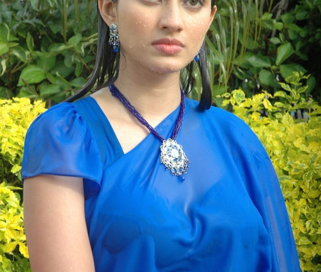 Gowri Pandit Wet Saree Photos Gowri Pandit Wet Saree Photos
