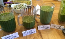 Green Smoothies for Irish Quilters