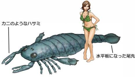 「海サソリ」の画像検索結果