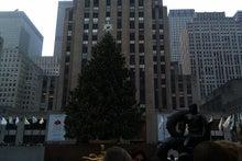 N.Y.に恋して☆-Christmas tree1
