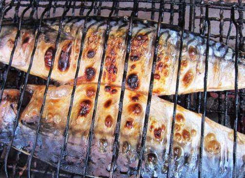 「歳取ってから食べ始める焼き魚」の画像検索結果