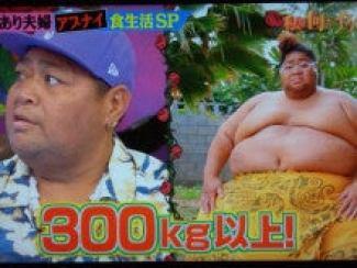 「小錦 太りすぎ」の画像検索結果