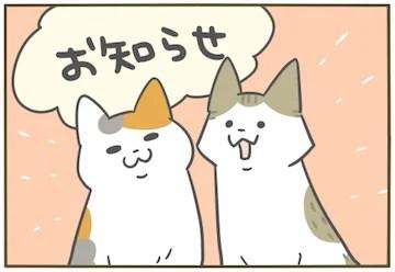 5 変 が な てる また の 巻 こと うち し 猫