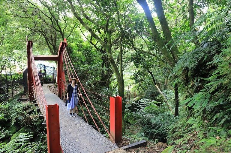 特別企畫――陽明山 竹子湖 | 臺灣観光のブログ