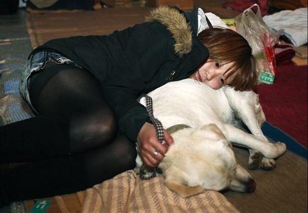 愛犬メイと再び出会えたイトウアカリ(Akari Ito)さん