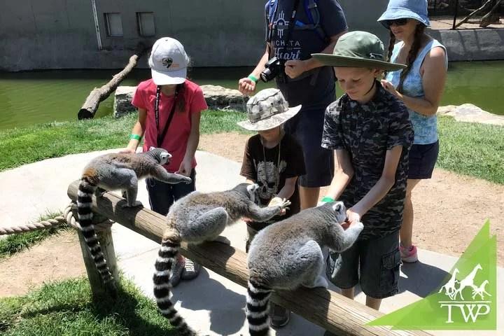 Kids-feeding-the-Lemurs