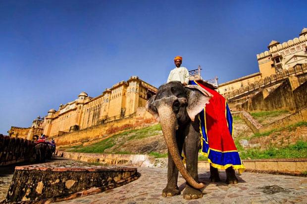 Amber-fort Jaipur